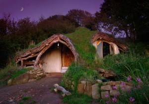 woodland-house-1